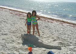 Family rentals in Outer Banks